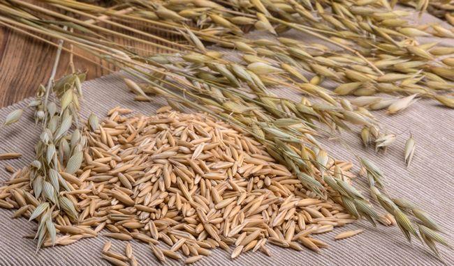 Цілісне зерно вівса