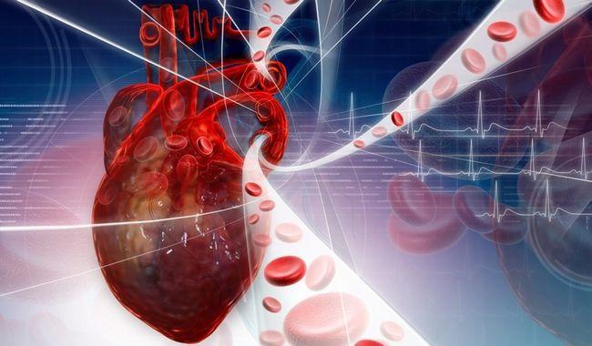 Лікування серця і судин