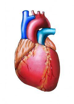 Аритмія серця причини