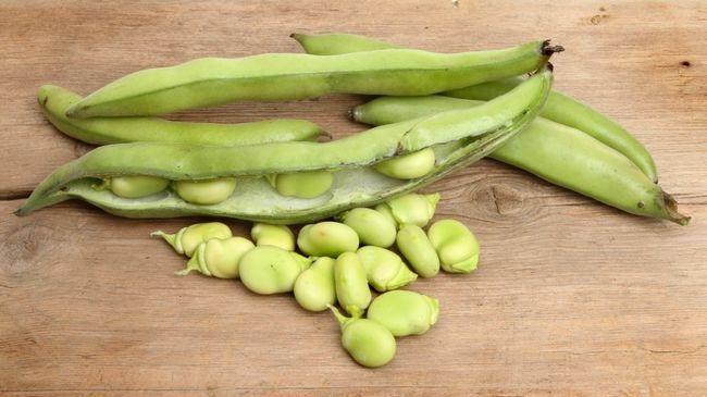 зелені боби