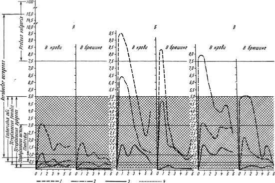 Динаміка змін концентрацій глікоцікліна в крові і очеревині