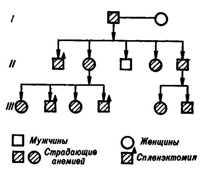 Генеалогічне дерево родини з вродженим сфероцитоз