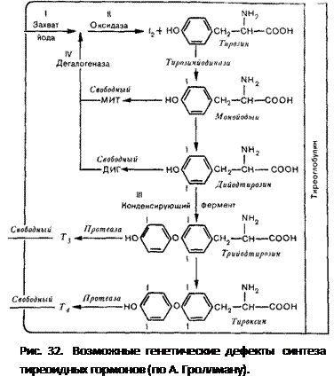 генетичні дефекти синтезу тиреоїдних гормонів