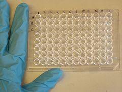 Мікропланшет для проведення імуноферментного аналізу
