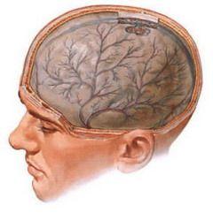 Енцефалопатія