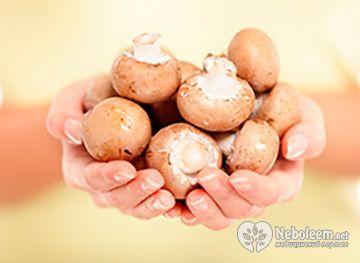 Калорійність смажених грибів, технологія їх приготування