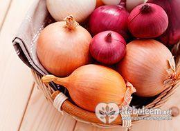 Калорійність цибулі ріпчастої - 40 ккал на 100 грам