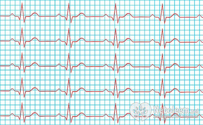 серцева діяльність