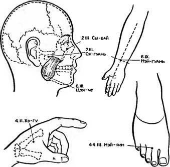 Точки акупунктури, що мають найбільше застосування в щелепно-лицевої хірургії