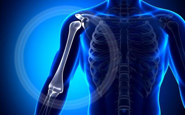 Плечова кістка
