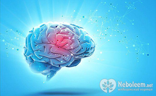 Порушення в роботі головного мозку і гіпоталамуса