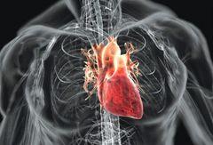 Ревматизм серця малюнок