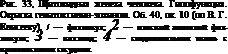 Підпис: Рис. 33, Щитовидна залоза людини. Гіпофункція. Забарвлення гематоксилін-еозі¬ном. Про. 40, ок. 10 (по В. Г. Єлисєєва). / - Фоллікул- 2 - плоский епітелій фол-лікула- 3 - коллоід- 4 - сполучна тканина з кровоносними судинами.