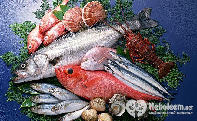 Риба - це м`ясо?