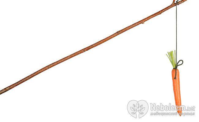 Метод батога і пряника