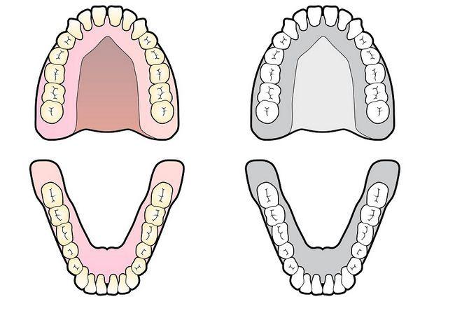 функції зубів